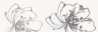 Midian bianco inserto kwiat A 20x60