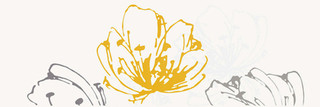 Midian giallo inserto kwiat 20x60