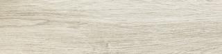 Ash Grey STR 59,8x14,8