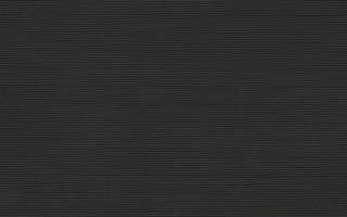 PS205 black 25x40