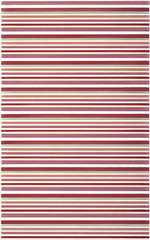 Diantus burgundy inserto stripe 25x40
